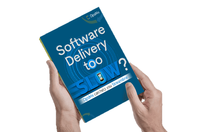 Slow software Delivery Case Study